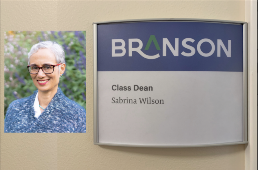 Sabrina Wilson as New Diversity, Equity, and Inclusion